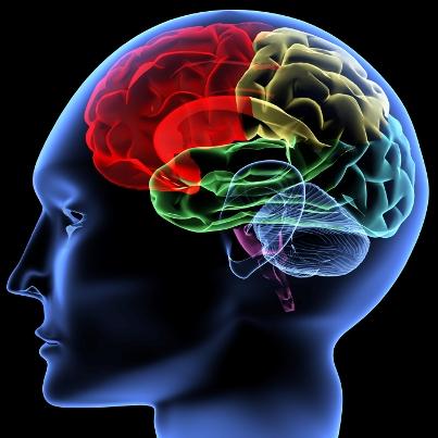 <a href = https://behavioralimmunology.com/depression-studies></a>
